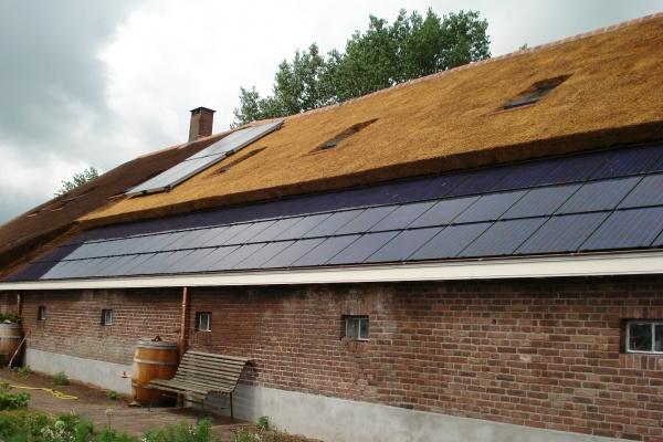 zonnepanelen-rieten-dak-1.jpg
