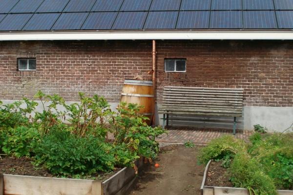zonnepanelen-rieten-dak-4.jpg